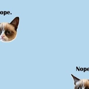 nope-grumpy cat underwear panel