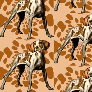American Fox Hound fabric