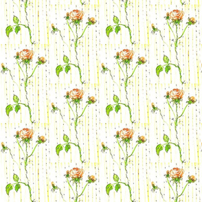 pink rose and green stem with yellow and green stripes