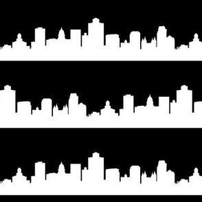 Salt Lake City, UT // Black