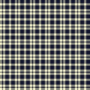 PLAID MIDNIGHT