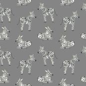 Zebra Black and white fabric/ Boys zebra fabric/ Jungle safari minimal black and white