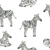 Zebra Black and white fabric/ Boys zebra fabric/ Jungle safari minimal black and white