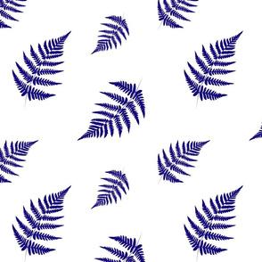 Dark Blue Fern