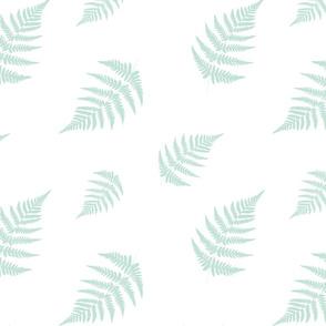 Mint Fern