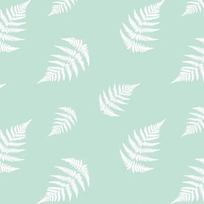 Fern White - Mint Background