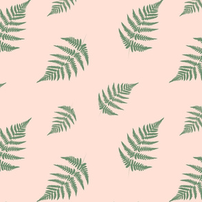 Green Fern - Coral Background