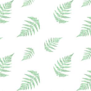 Fern Green Texture