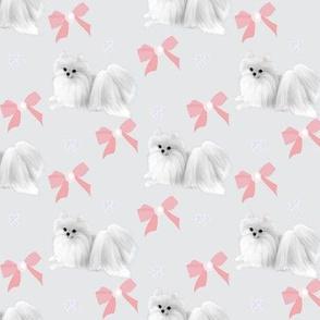 """Pomeranian & Bows  Pink 2 1/2 x 1 1/2"""""""