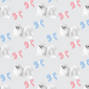 "Pomeranian & Bows  4""x3"""