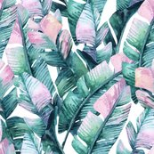 Rtropical_banana_leaves_shop_thumb