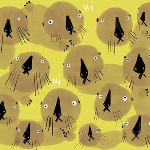 Otter concern