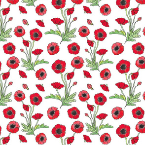 scarlet poppy repeat