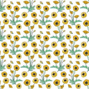 golden poppy repeat 6x6