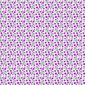 purple poppy repeat 2x2