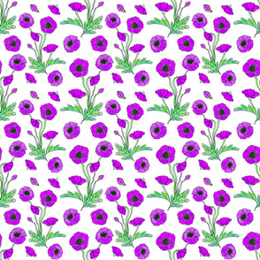 purple poppy repeat 6x6