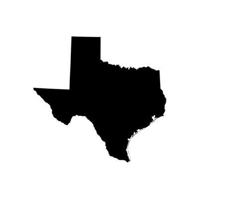 Silhouette Texas Texas silhouette 18quot black and white fabric