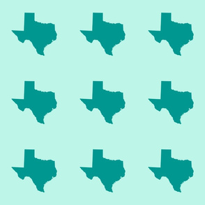"Texas silhouette - 6"" teal on mint"