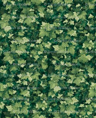English Ivy ~ Lush ~ Doll Scale