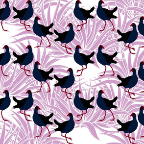 Pūkeko with flax (in orchid)