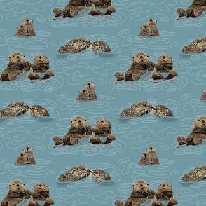 Otter Love  - Challenge