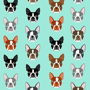 boston terrier heads - boston terrier faces mint cute dog fabric - mint