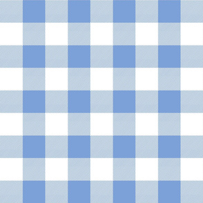 buffalo plaid 2in cornflower blue and white