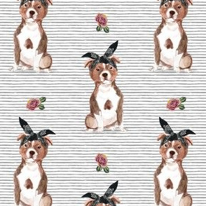 "4"" Pit Life - Red Pitbull - Grey Stripes Floral"