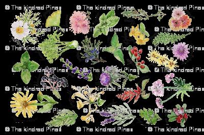 Plants and Herbs Alphabet tea towel