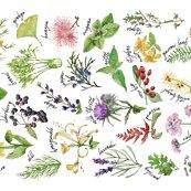 Rplants_and_herbs_alphabet_tea_towel_less_saturated_shop_thumb