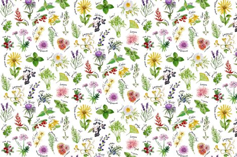 Rrplants-and-herbs-alphabet-pattern_shop_preview