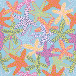 Starfishes Galore