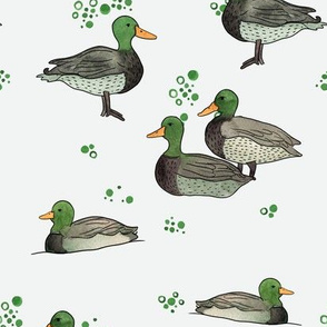 watercolor duck pattern 1