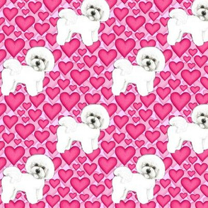 Bichon Frise dogs and pink hearts