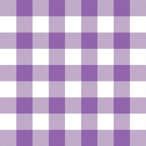 buffalo plaid 2in amethyst and white