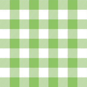 buffalo plaid 2in apple green and white