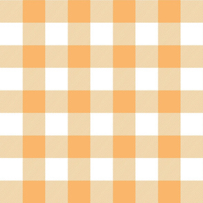 buffalo plaid 2in mango and white