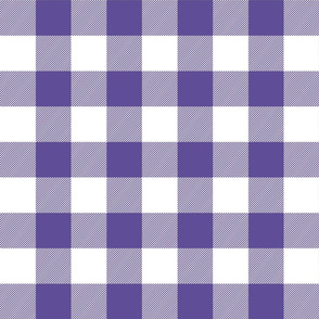 buffalo plaid 2in purple and white