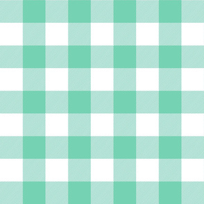 buffalo plaid 2in sea foam green and white