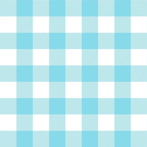 buffalo plaid 2in sky blue and white