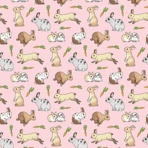 Rabbits on pale pink