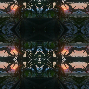 Sunrise window ganja