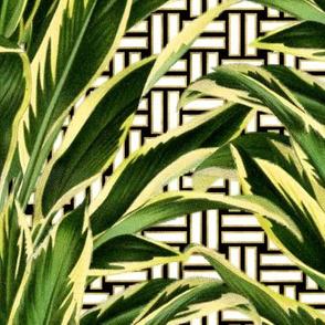 Palms on Stitch Black White Gold