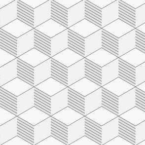 Orthogonal Cube Lines Lite in Grayscale