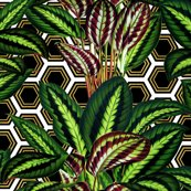Palms_on_polygon_white_black_gold1_shop_thumb