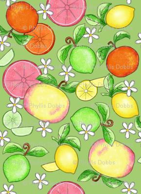 Citrus Fruit Green Large