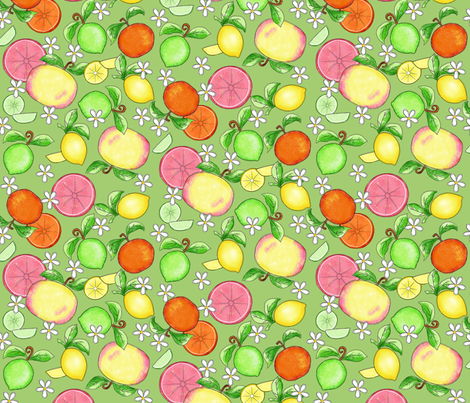 Citrus Fruit Green Large fabric by phyllisdobbs on Spoonflower - custom fabric