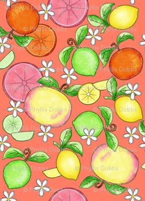 Citrus Fruit Orange Small