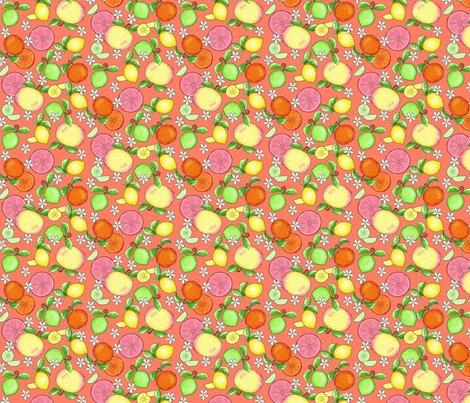 Rcitrus-fruit-orange-small_shop_preview