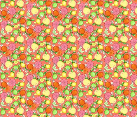 Citrus Fruit Orange Small fabric by phyllisdobbs on Spoonflower - custom fabric